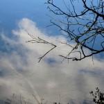 Himmelspiegelung