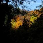 Herbststimmung Bleckenau