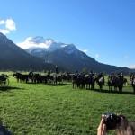 Kutschen und Reiterformation