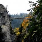 Marienbrücke Herbst