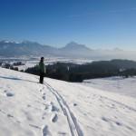 Ihre Spuren im Schnee